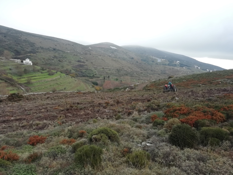 Field clearing, © Municipality of Andros